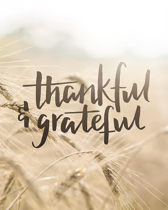 Thankful_Grateful-vert-web_1024x1024.jpg