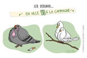 Topito-Illustration-10-600x400